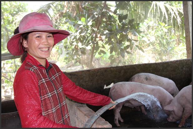 Mikrofinans i Vietnam